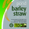 Pond Barley Straw-100% Natural Algae and Blanketweed Treatment