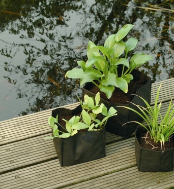 Aquatic Planting bags square